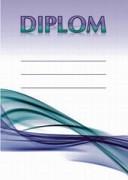 Diplom - 6700